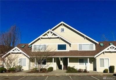 Lynden Condo/Townhouse Sold: 266 W Maberry Dr #102C