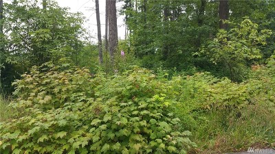 Blaine Residential Lots & Land For Sale: 5476 Wood Duck Lp #13