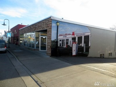 Ferndale Commercial For Sale: 2009 Main St