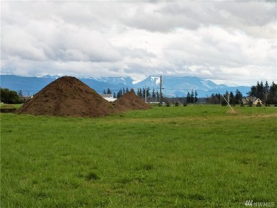 Lynden WA Residential Lots & Land For Sale: $224,900