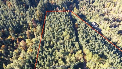 Residential Lots & Land For Sale: Blue Mt Rd