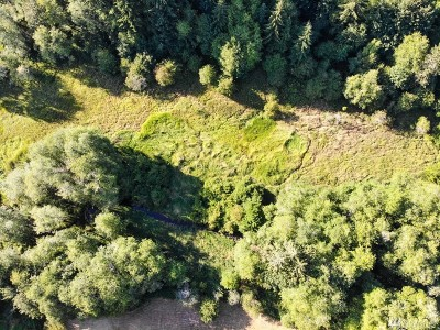Residential Lots & Land For Sale: 118 Gibson Creek Rd