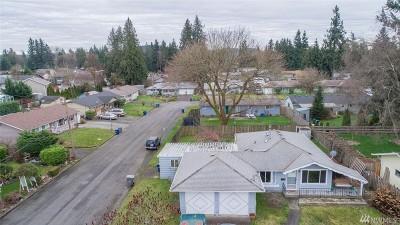 Auburn Single Family Home For Sale: 706 Cedar Dr SE