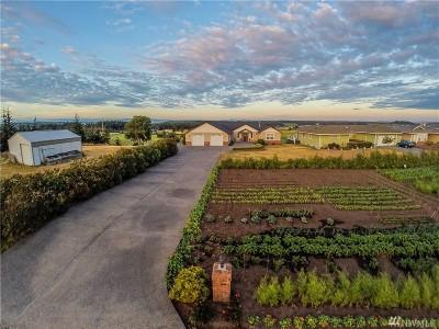 Coupeville Single Family Home For Sale: 45 Mouw Lane