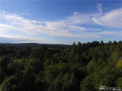Residential Lots & Land For Sale: 14019 Old Hwy 99 SE