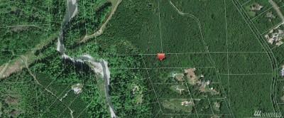 Carbonado Residential Lots & Land For Sale: 111 266th Av Ct E