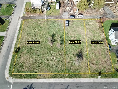 Blaine Residential Lots & Land For Sale: 432 B St
