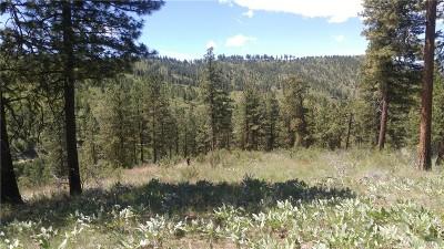 Chelan, Chelan Falls, Entiat, Manson, Brewster, Bridgeport, Orondo Residential Lots & Land For Sale: Swanson Gulch Rd