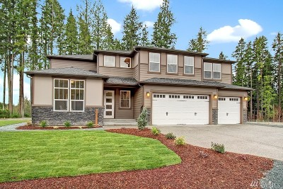 Lake Stevens Single Family Home For Sale: 11519 88th St NE