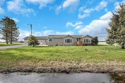 Whatcom County Single Family Home For Sale: 9021 Double Ditch Rd