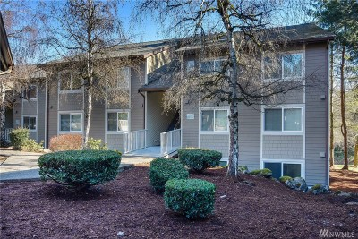 Issaquah Condo/Townhouse For Sale: 200 Mountain Park Blvd SW #A103