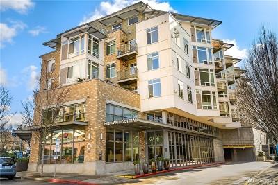 Condo/Townhouse Sold: 211 Kirkland Ave #506