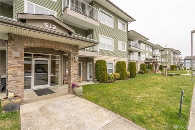 Bellingham Condo/Townhouse For Sale: 512 Darby Dr #302