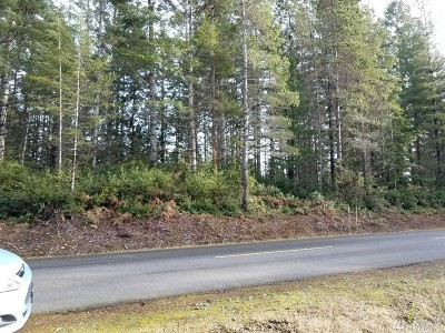Residential Lots & Land For Sale: 1 Jack Pine Lane