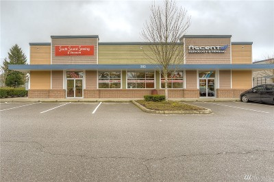 Olympia Commercial For Sale: 365 Cooper Point Rd NW