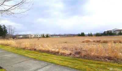 Residential Lots & Land For Sale: 4611 Alba Lane