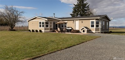 Lynden Single Family Home For Sale: 1769 Pangborn Rd