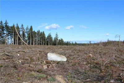 Oak Harbor Residential Lots & Land For Sale: Swantown Rd #Lot C