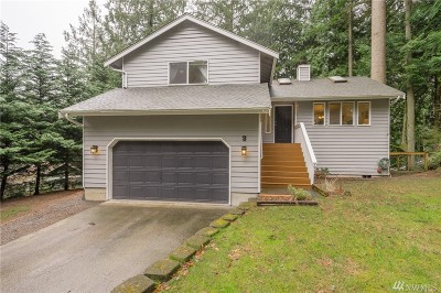 Bellingham Single Family Home For Sale: 3 Hawks Hill Place