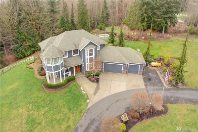 Snohomish Single Family Home For Sale: 3210 219th Ave SE