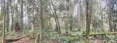 Shelton WA Residential Lots & Land For Sale: $79,500