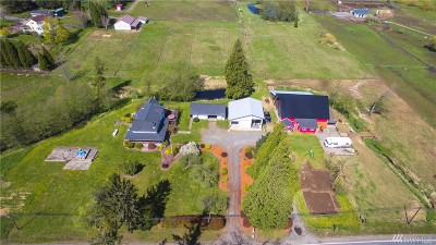 Ferndale Single Family Home For Sale: 3470 Mountain View Rd