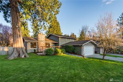 Kirkland Single Family Home For Sale: 12118 105th Ave NE
