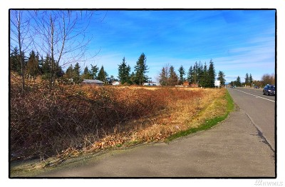 Lynden Residential Lots & Land For Sale: Guide Meridian