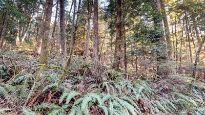 Bellingham Residential Lots & Land For Sale: 1806 Swamp Creek Lane