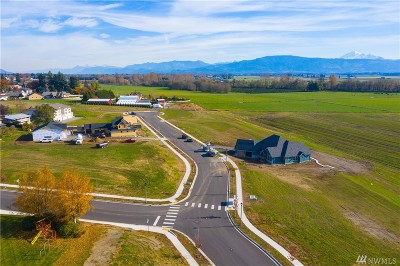 Lynden Residential Lots & Land For Sale: 1618 Farmview Terr