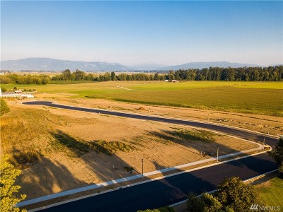 Lynden Residential Lots & Land For Sale: Kok Rd