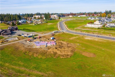 Lynden Residential Lots & Land For Sale: 1766 Farmview Terr