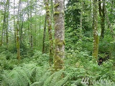 North Bend Residential Lots & Land For Sale: 41405 SE 143rd St