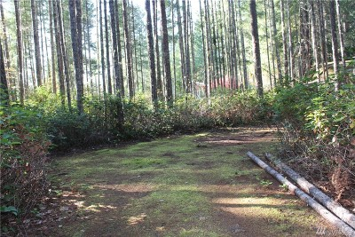 Mason County Residential Lots & Land For Sale: 240 N Mountain View Dr