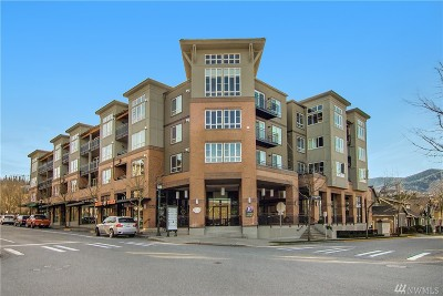 Issaquah Condo/Townhouse For Sale: 1840 25th Ave NE #309