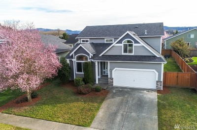 Orting Single Family Home For Sale: 220 Michell Lane NE