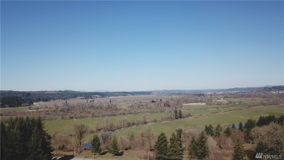 Residential Lots & Land For Sale: 321 Hwy 603