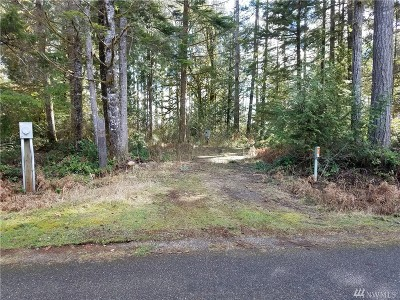 Residential Lots & Land For Sale: 100 W Blueberry Lane