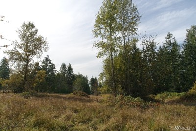 Eatonville Residential Lots & Land For Sale: 320th St E