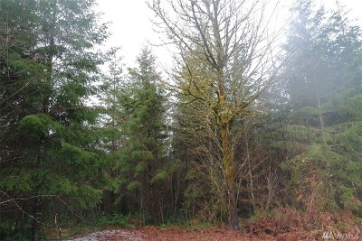Residential Lots & Land For Sale: 132 Steveson Rd