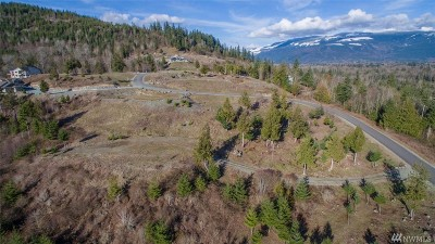 Sedro Woolley Residential Lots & Land For Sale: 1 Avalon Heights Wy