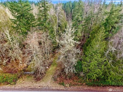 Eatonville Residential Lots & Land For Sale: 5920 416th St E