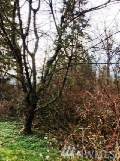 King County Residential Lots & Land For Sale: 31 S 299th St