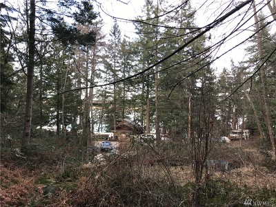 Lummi Island Residential Lots & Land For Sale: 1291 Island Dr