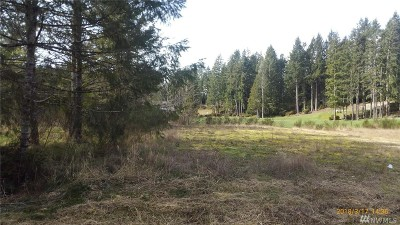 Mason County Residential Lots & Land For Sale: 371 Road Of Tralee