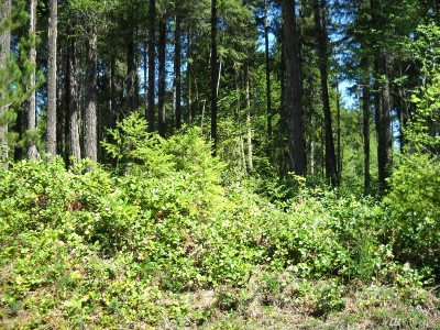 Residential Lots & Land For Sale: 10 N Wood Duck Ct E