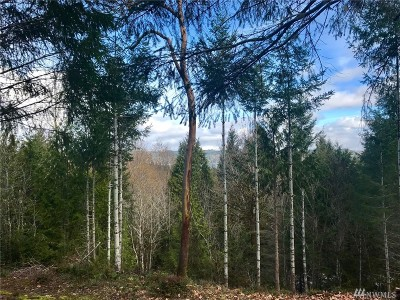 Residential Lots & Land For Sale: 31 Highway 106