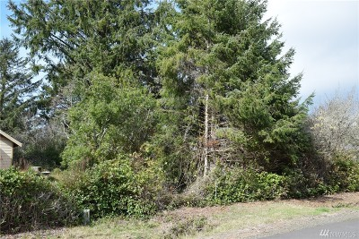 Residential Lots & Land For Sale: 127 S Narwhal Lp SW
