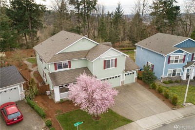 Renton Single Family Home For Sale: 273 Blaine Dr SE