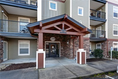 Bellingham Condo/Townhouse For Sale: 680 32nd St #C410